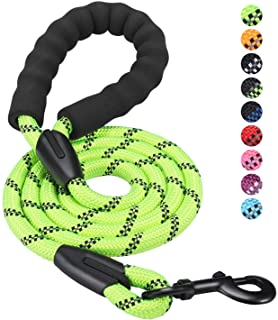 HIKISS 5 FT Strong Dog Leash, Rope Leash with Comfortable Padded Handle and Highly Reflective Threads Durable Dog Leashes ...
