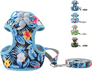 voopet Beach Style Soft Dog Harness, Puppy Breathable Mesh Front Padded Vest Harness with Leash, Island Style Pets Adjustable No-Pull Walking Harness - Easy Control for Small Dogs & Cats