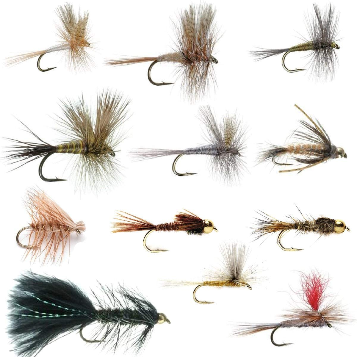 The Fly Cheap mail order specialty store High quality Fishing Place Eastern D Trout Assortment - Essential