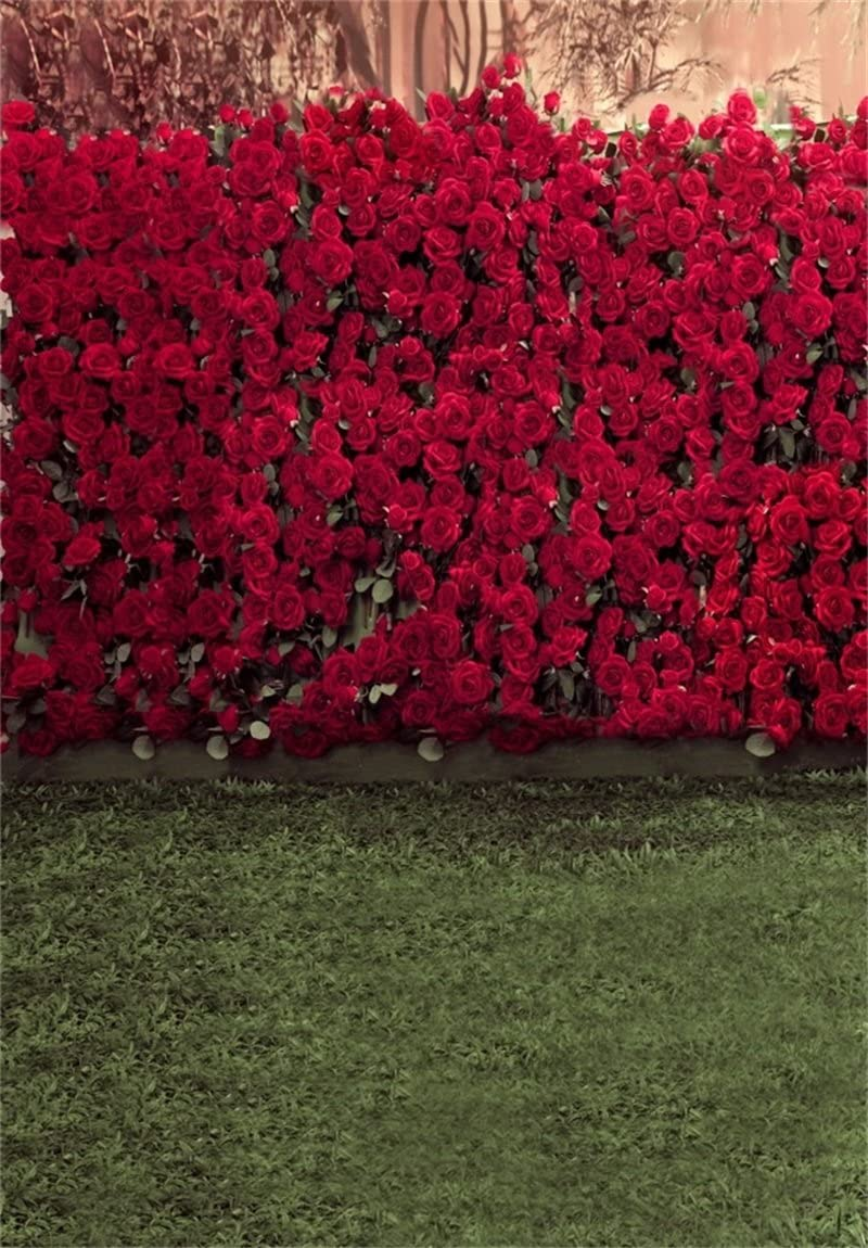 AOFOTO 8x8ft Portrait Backdrops Photography Wedding Background Manor Romance Red Rose Flowers Wall Blurry Grassland Lovers Anniversary Decor Kid Girl Ladies Portrait Photo Shoot Studio Props Vinyl