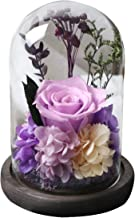Amoleya 4.9 Inch Handmade Preserved Rose Enchanted Rose That Lasts in Glass Dome,Violet
