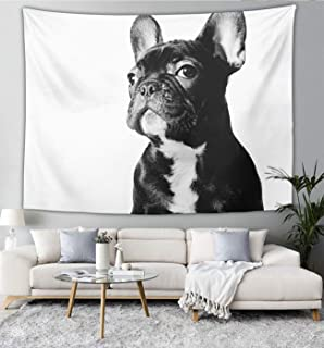NiYoung Luxury Fashion Tapestry Wall Hanging Black French Bulldog White Tapestry Blanket for Bedroom Living Room Dorm Wall Decor Art Tapestries Bedspread, 60x70 Inches