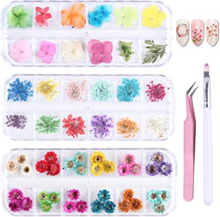 PHAETON 36 Colors Mini Nail Dried Flowers 3D Nail Art Sticker, Flower Beauty Nail Stickers for Manicure, Natural Real Dry Flower Kit with a Curved Tweezers and a Nail Brush 3 Boxes