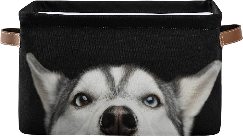 Biekaya Husky Dog Foldable Storage with F Handle Collapsible Bin 日本限定 デポー