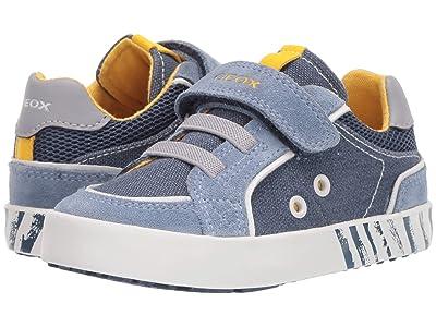 Geox Kids Kilwi 38 (Toddler) (Blue Azure) Boy