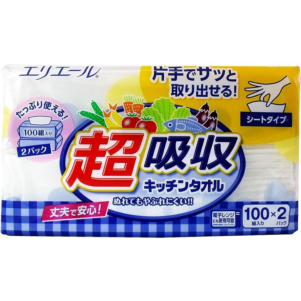 腹部エリートビュッフェ大王製紙 超吸収キッチンタオル シートタイプ2個×5パック