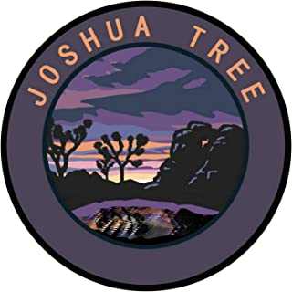 Explore Joshua Tree National Park 3