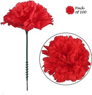 Best blue carnation flower arrangements Reviews
