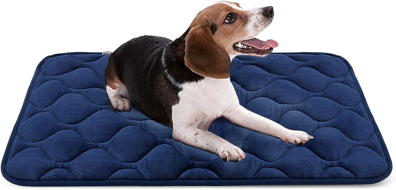 Hero Dog Medium Dog Bed Mat 35 Inch Crate Pad Anti Slip Mattress Washable for Pets Sleeping (bluee M)
