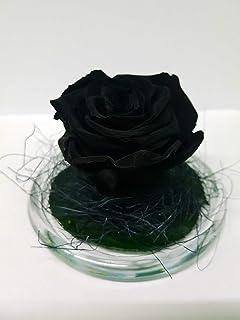 Gratis TU ENV/ÍO Rosas preservadas moradas Hecho en Espa/ña. Cofre de Madera con Dos Rosas Naturales eternas moradas sobre Base de musgos preservados