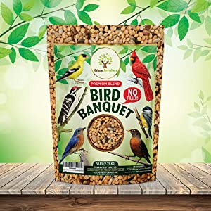 Nature Anywhere Fresh, Premium Wild Bird Seed Blend with No Fillers. Get More Birds in Your Feeders Guaranteed. Keep Your Garden Birds Healthy!