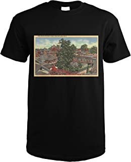 winchester mystery house shirt