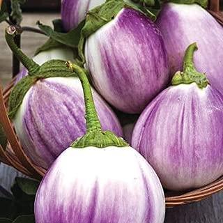 AGROBITS VegableEgg Rotonda Bian sfumata NON-OGM