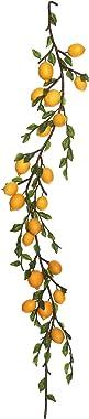 Vickerman FK171701 Lemon Fruit Garland