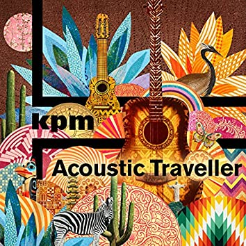 Acoustic Traveller