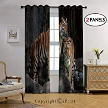 Moroccan Fashion Room Darkening Blackout Grommet Top Curtains in The Jungle on Big Rocks Image Wild Cats in for Living Room, 38 by 96 Inch(2 Panel),Grey and Ginger