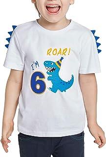 AMZTM 6th Birthday T Shirt - 6 Year Old Boys Dino Theme Party Birthday Tee Shirt