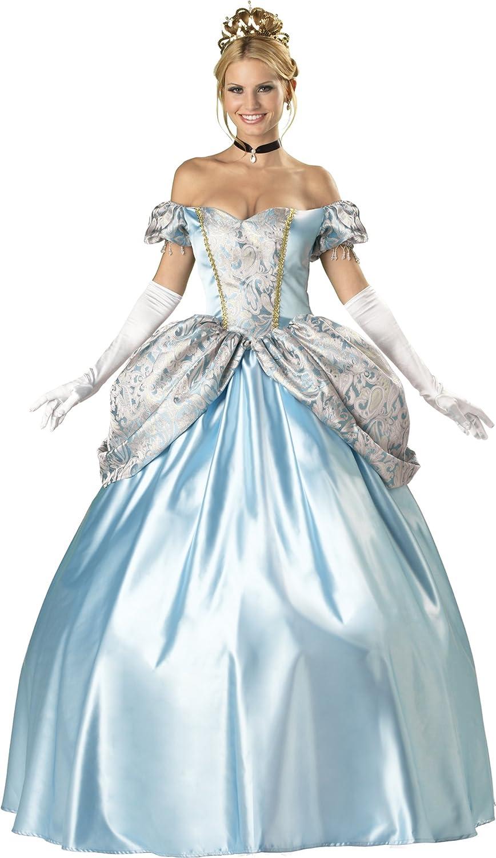 Halloween Costumes For Women Princess.Amazon Com Fun World Elite Enchanting Princess Costume Clothing