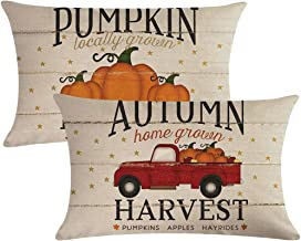 ULOVE LOVE YOURSELF 2pack Pumpkin Patch Pillow Covers Autumn Harvest with Vintage Red Truck Farmhouse Decorative Rectangular/Waist Cushion Covers Pillowcases,12 x 20 Inches
