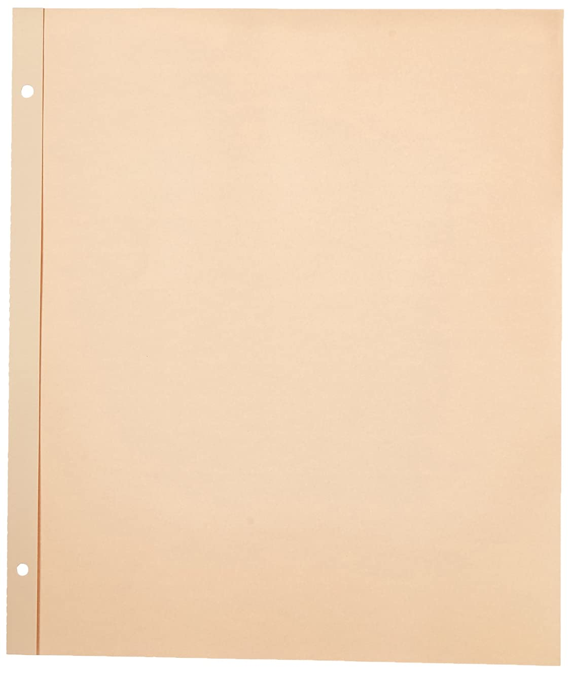 Pioneer 11-Inch-by-14-Inch, Postbound Refill Pages, 25 Per Package