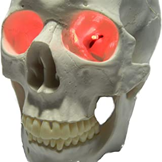 24 inch, Battery Operated, Led Eyes for Masks, Skulls and Halloween Props