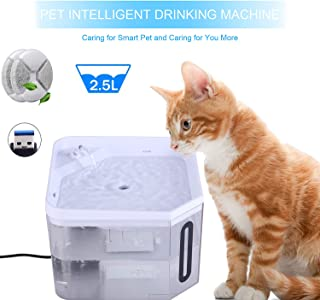 Best filtered water bowl for dogs Reviews