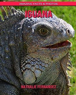 Iguana: Amazing Facts & Photos