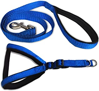 Smarty Pet Nylon with Blue Padding Dog Harness 1 inch Black - (Medium)