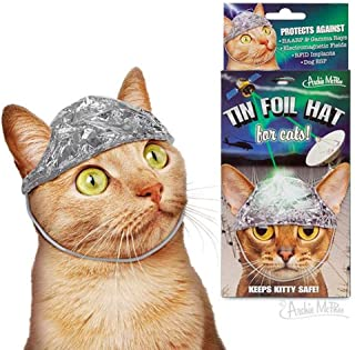 Archie McPhee Tin Foil Hats for Conspiracy Cats
