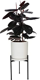 Mid Century Plant Stand Indoor Outdoor Metal Planter Pot Stand Suitable for 8-10 Inch Planter, Metal Modern Decor Plant Pot Stand - Garden Gift & Home Decor- Tripod Matte Black (Planter Not Included)