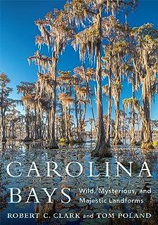 Carolina Bays: Wild, Mysterious, and Majestic Landforms (Non Series)
