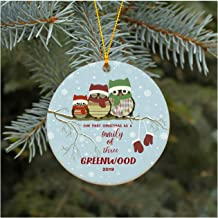 Christmas Ornament Our First Christmas As A Family of Three Ornament 2019 Greenwood Christmas Tree Ornament 2019 Present Lovely Ceramic Tree Decoration Happy Holidays 3 Inches