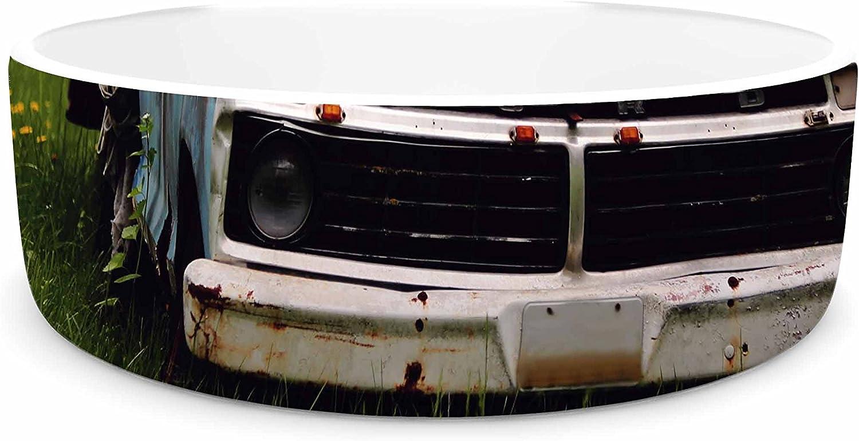 KESS InHouse Angie Turner Old Ford Truck  bluee Digital Pet Bowl, 7
