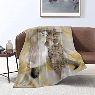 Luoiaax Funny Children's Blanket Kitten Siblings Lying Beside Sleepy Heads Cat Pet Animal Lovers Best Friends Image Lightweight Soft Warm and Comfortable W91 x L60 Inch Multicolor