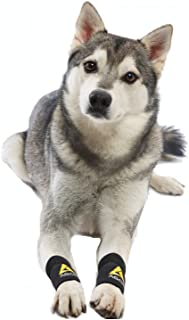 AGON (Pair) Dog Canine Front Leg Brace Paw Compression Wraps with Protects Wounds Brace Heals and Prevents Injuries and Sp...