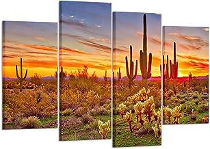 Amazon Com Arizona Desert Art