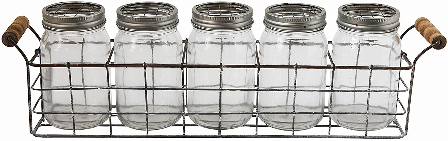 Creative Co-Op Glass Vases in Wire Basket 6 Pieces with New life Superior Handles