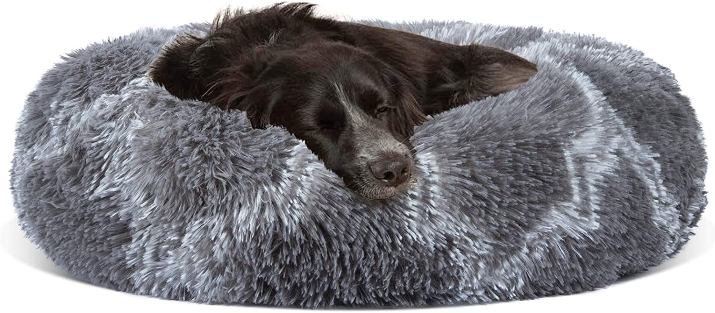 INVENHO Orthopedic Dog Bed Bargain Cat Very popular Pet Dogs Medium for Small