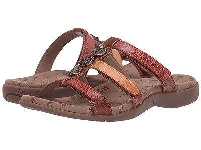 Taos Footwear Prize 3 (Harvest Multi) Women