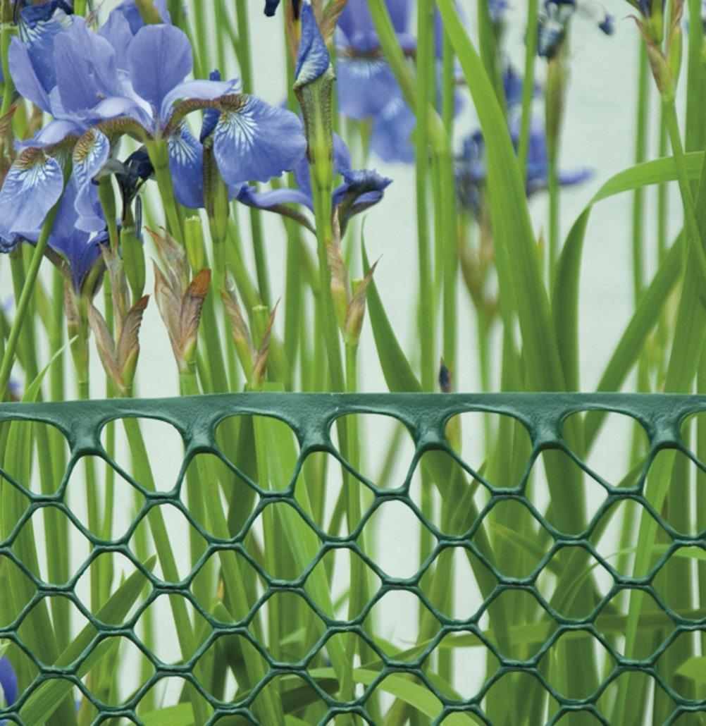 Bradas AS-HEX15151025GR mampara y cercado de jardín - Mamparas y cercados de jardín (Tela, Cubrir Vallas, Balcones o cercados, 300 g/m², 220 x 220 mm): Amazon.es: Jardín