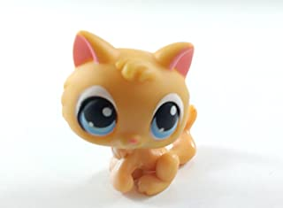 Kitten #47 (Orange, Blue Eyed) - Littlest Pet Shop (Retired) Collector Toy - LPS Collectible Replacement Single Figure - Loose (OOP Out of Package & Print)