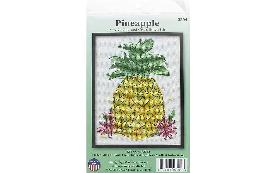 Design Works Crafts 3294 Crossstitch Kit 5x7 Pineapple