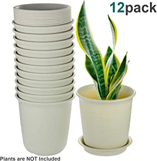 EHWINE Plant Pots Indoor, 6 Inch Plastic Flower Planters with Drainage Hole and Tray, Pack of 12 - Plants Not Included, Beige