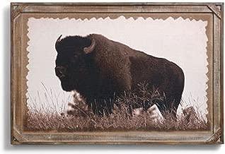 Big Sky Carvers Denver Bryan Barnwood Gallery Buffalo Print, 36