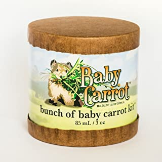 Bunch of Baby Carrot Kit Wild Carrot Herbals 3 Item Kit