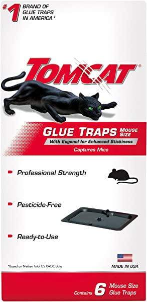 Tomcat Glue Traps Mouse Size With Eugenol For Enhanced Stickiness Contains 6 Mouse Size Glue Traps Captures Mice And Other Household Pests Professional Strength Pesticide Free And Ready To Use