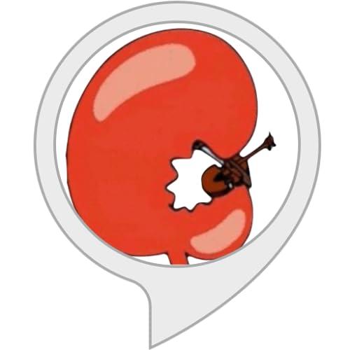 die kleinste Violine der Welt