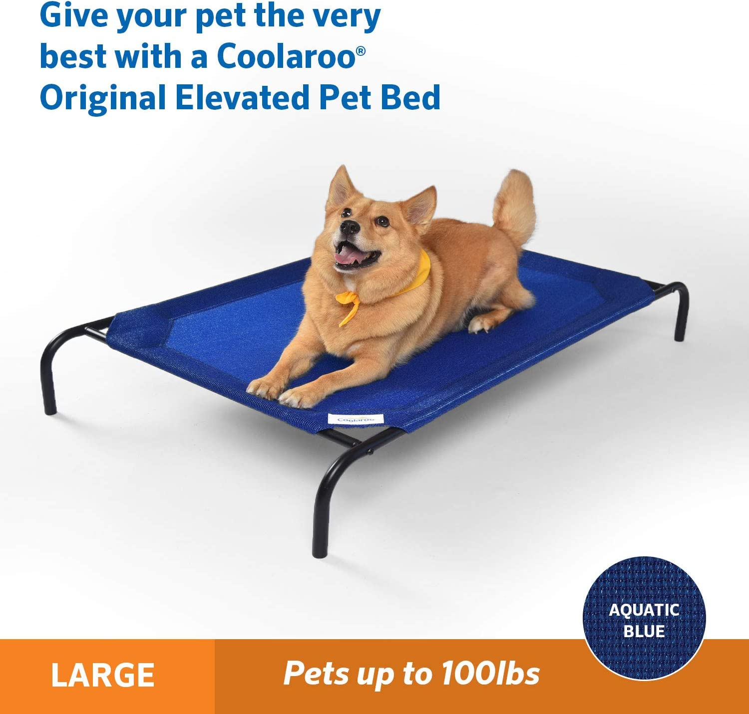 best dog beds consumer reports