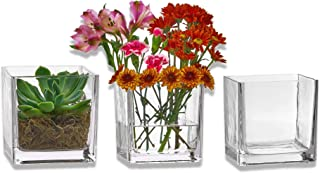 Best glass square vase Reviews