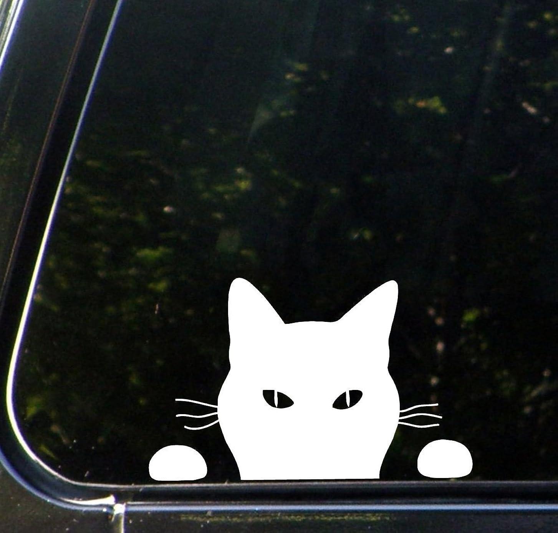 ニンニクこどもの宮殿詳細な猫 ネコ ねこ キャット cat ウォッチング 覗き ステッカー シール デカール ホワイト